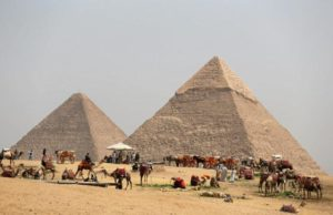 FILE PHOTO: A group of camels and horses stand idle in front of the Great Pyramids awaiting tourists in Giza, Egypt on March 29, 2017. REUTERS/Mohamed Abd El Ghany/File Photo