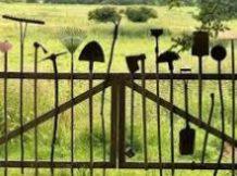 சுற்றுச்சூழல் விழிப்புணர்வை ஏற்படுத்த உதவும் இணைதளங்கள்